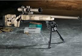 kimber tactical rifle