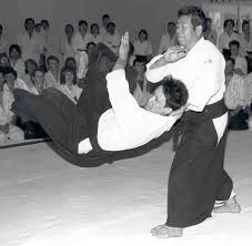 aikido weapon