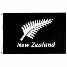 silver fern logos