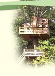 custom tree houses