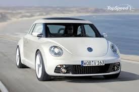 2010 beetle