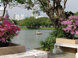 lumpini park thailand