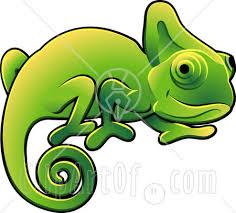 lizard illustrations