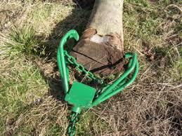 logging hook