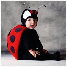 lady bug baby