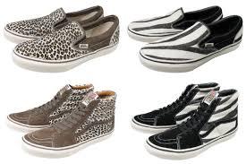 leopards animal