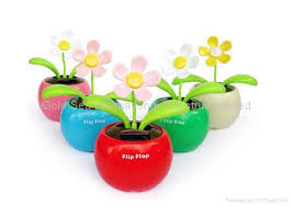 flower solar