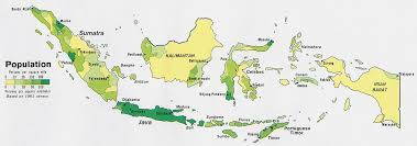 indonesia population density map