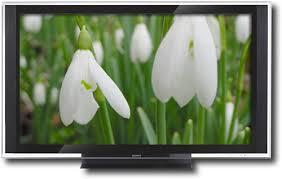 36 inch flat screen tv
