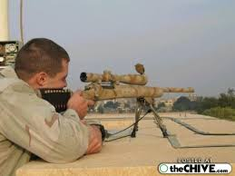 rifles with scope