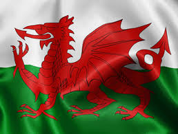 pictures of welsh dragon