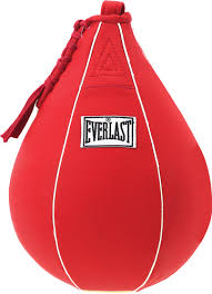 everlastboxing