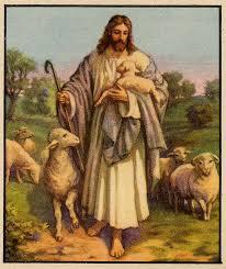 good shepherd image