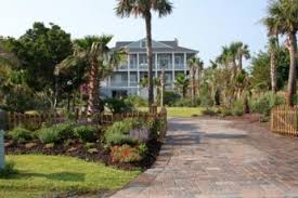 house palms