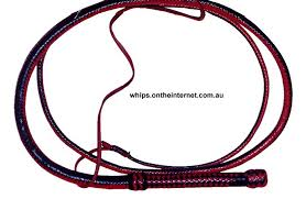 australian bull whip