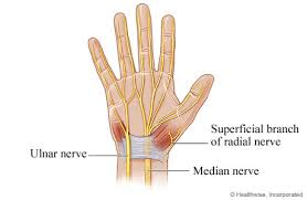 nerves in hand