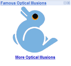 famous optical