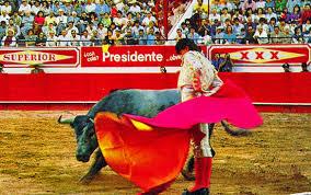mexico bullfighting