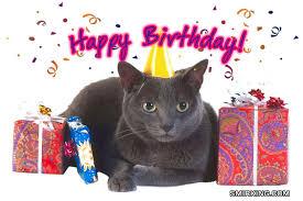 birthday cards cats
