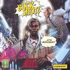 9th wonder buckshot