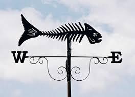 fish skeleton art