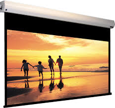 100 projection screen