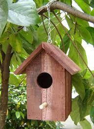 natural bird houses