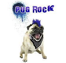 punk dogs