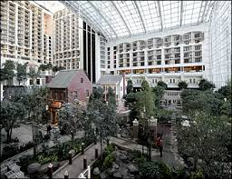 hotels gaylord