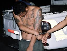 pictures of ms 13