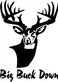 buck decal