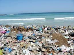 garbage environment