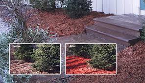 mulch colorant
