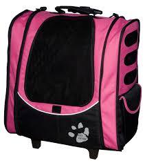 cat carrying bag