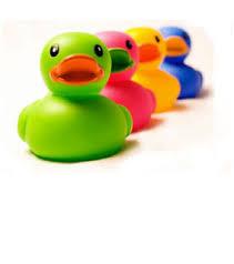 duck school
