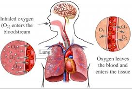 lung oxygen