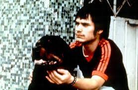 amores perro