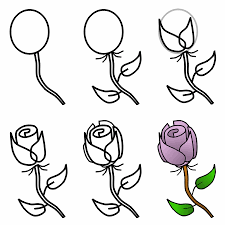 how to draw a rose easily