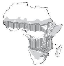map of african savanna