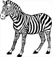 clip art zebra