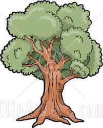 clip art oak trees