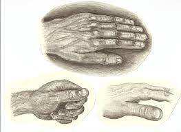 pencil drawing of hands