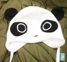 hat with ear warmers