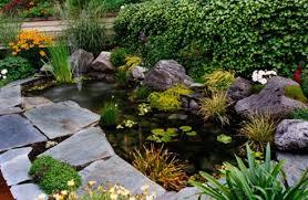 pond garden designs