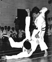 taekwondo self defence