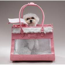 dog carriers bags