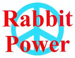 rabbit power