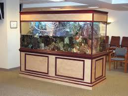large turtle tank