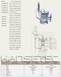 pilot operated safety valve