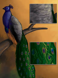 painting of peacock